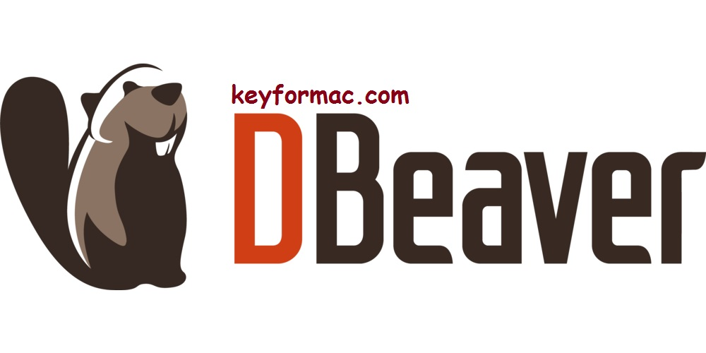 DBeaver 21.1.3 Crack With Serial key Free Download 2021