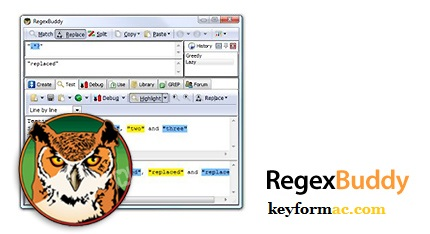 RegexBuddy 4.12.0 Crack With License Key Free Download